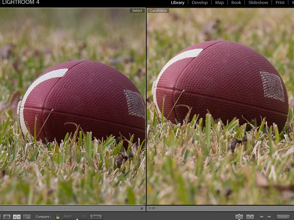 Lens 200mm vs 300mm 200mm f4 And 5d3 at 300mm